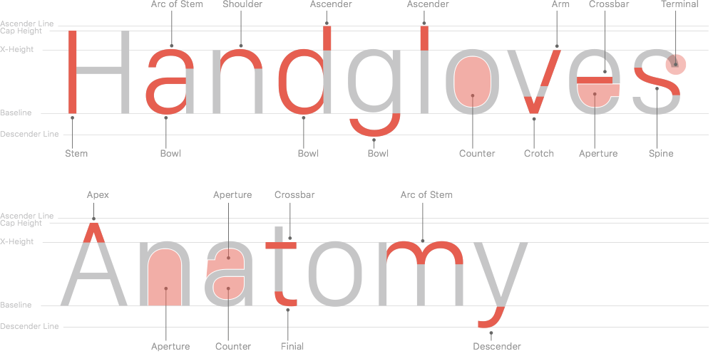 Why San Francisco
