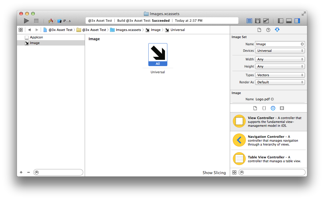 Screenshot of Xcode showing the Attributes inspector in an Xcode Asset Catalog.